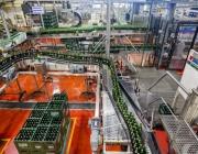 Νέα γραμμή παραγωγής από την Ολυμπιακή Ζυθοποιία στο εργοστάσιο της εταιρείας στη Σίνδο Θεσσαλονίκης